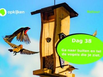 40dagen_Page_44