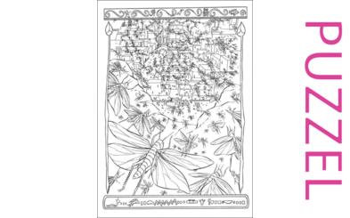 Puzzel – Exodus  5, 6, 7, 8, 9, 10, 11, 12, 13 – Mozes, Aaron, Farao,10 plagen, paasfeest, uittocht 14
