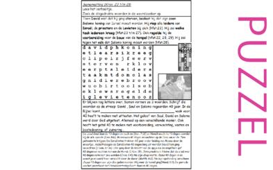 Puzzel – 1 Kronieken 23, 24, 25, 26, 27, 28, 29 – David regelt taakverdeling, bouw tempel, Salomo en sterft, het getal 40 4