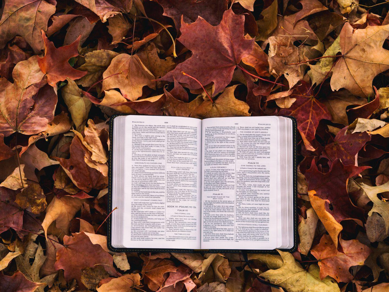 De bijbel toegankelijk voor iedereen
