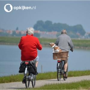 Binnenkort: portal voor ouderenwerk